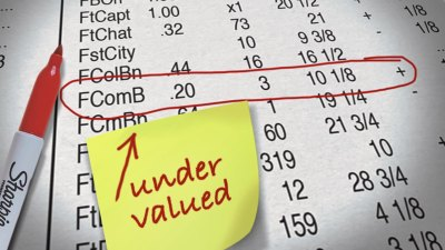 How to Value a Company's Stock
