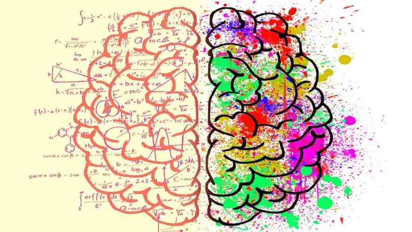 The Emotional Mind and the Rational Mind