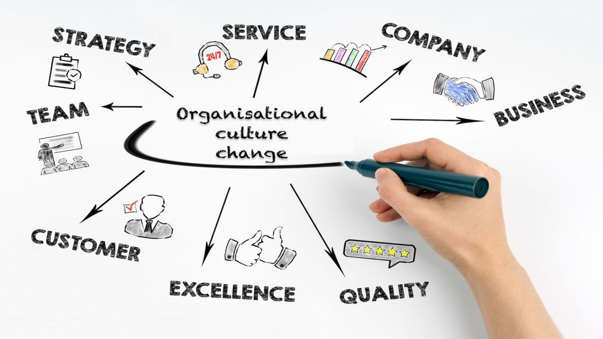 The Culture in High-performance Organisations