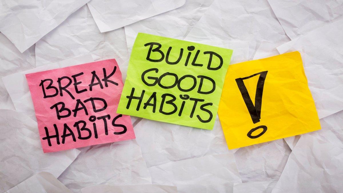 Developing Positive Work Habits as a Protégé